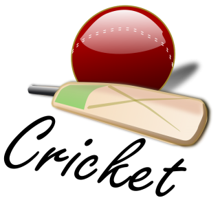 High Resolution Cricket Ball Png Icon PNG images