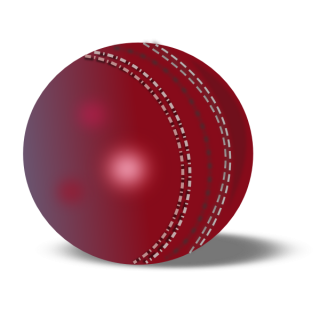 Icon Free Vectors Download Cricket Ball PNG images
