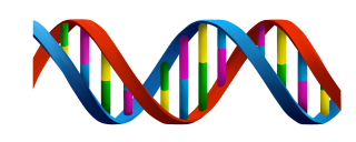 Colorful For Children Dna Images PNG images