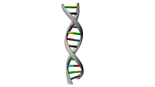 Like Gray Stairs Dna Photos PNG images