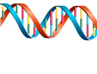 Colorful Park Dna Image PNG images