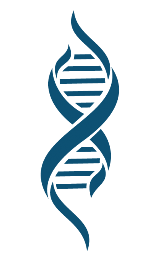 Hd Dna Png Transparent Background PNG images