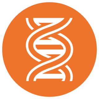 Ornage And White Dna High-quality Pictures PNG images