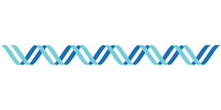 Single Strip Format Dna PNG Picture PNG images