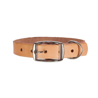 Beige Metal And Leather Dog Collar Photo HD PNG images