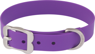 Leather And Metal Dog Collar Purple Design Images PNG images