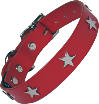 Metal Star And A Red Dog Collar Photos PNG images
