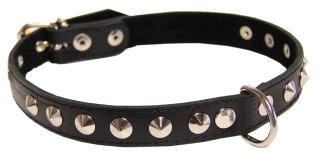 Photo Metal Belt And Dog Collar Images PNG images
