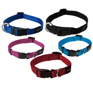 Pictures Color Dog Collar For Pets PNG images