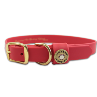 Red Background Dog Collar For Special Dogs Pictures PNG images