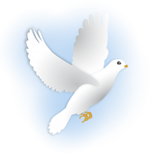 Dove Png Pictures PNG images