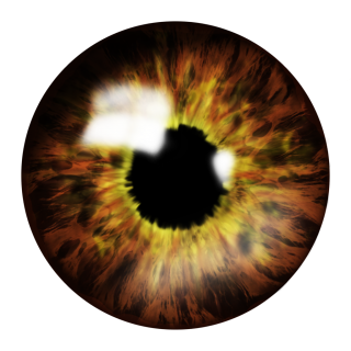 Brown Eye Png File PNG images