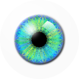 Eye Drawing Png PNG images