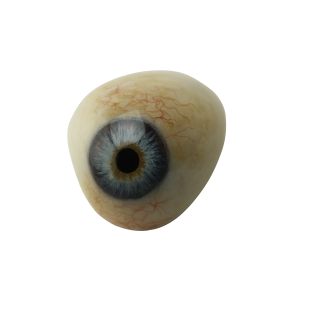Eye Transparent PNG PNG images
