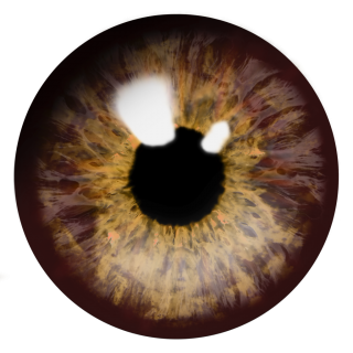 Real Brown Eye Png PNG images