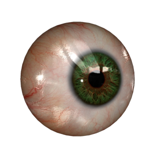 Real Eye PNG PNG images