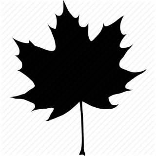 Black, Autumn, Canada, Canadian, Fall, Leaf, Maple, Tree Icon PNG images