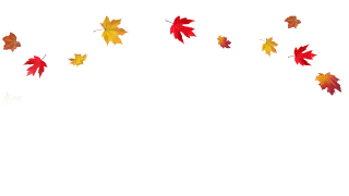 Vectors Icon Falling Leaves Free Download PNG images