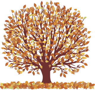 Download For Free Falling Leaves Png In High Resolution PNG images