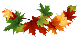 Download Falling Leaves Latest Version 2018 PNG images