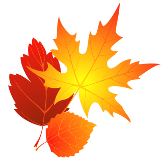 High-quality Falling Leaves Cliparts For Free! PNG images