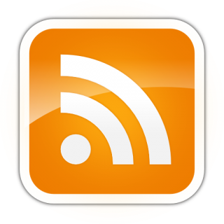 Orange Feed Icon Png PNG images