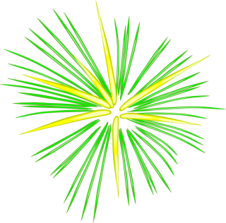 Green Fireworks Png PNG images