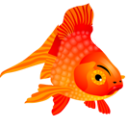 Fish Icon PNG images