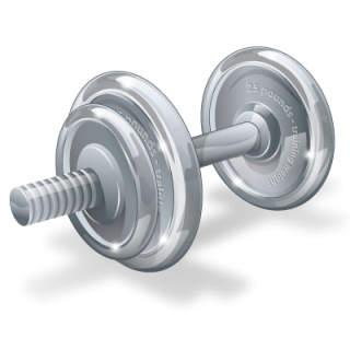 Fitness, Gym, Physical, Weight, Weightlifting, Weights Icon | Icon PNG images