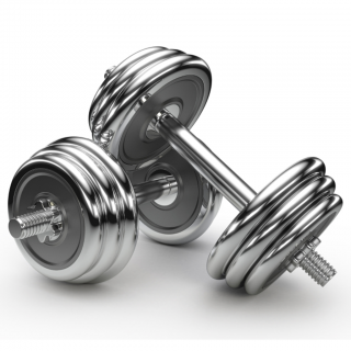 Galleries Related: Gym Png , Gym Icon Vector , PNG images