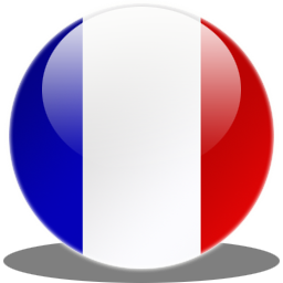 Library France Flag Icon PNG images