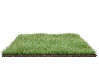 Grass Field Png PNG images