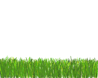 Designs Png Grass PNG images