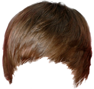 Hair Png Hair Transparent Background Freeiconspng If you like, you can download pictures in icon format or directly in png image format. hair png hair transparent background