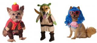 Pet Halloween Costume Png PNG images