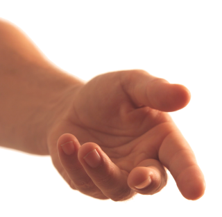 Hands Png, Hand Image PNG images