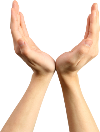Hands Png, Hand Image Photo PNG images