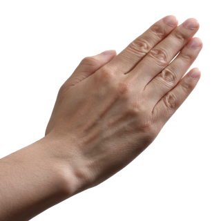 Hands Png, Hand Image Picture PNG images