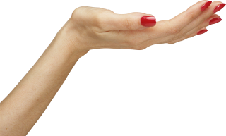 Hands Png, Hand Image Women Hands PNG images