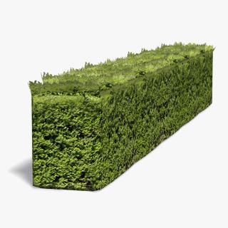 Free Download Hedges Png Images PNG images