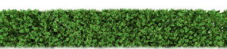 PNG Hedges HD PNG images