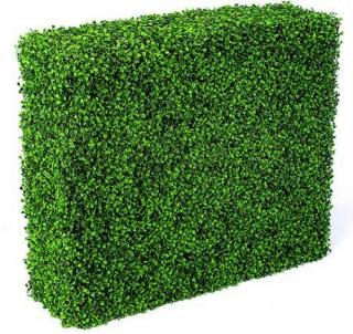 Hedges Images Png Free Download PNG images