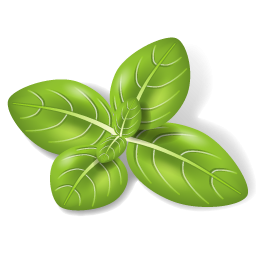 Herbs Leaves Icon PNG images