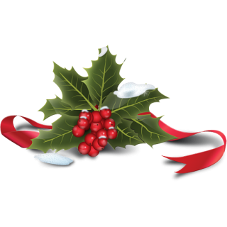 Holly Icon PNG images
