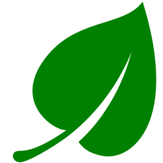 Green Leaf Icon PNG images