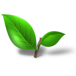 Image Leaf Icon Free PNG images