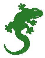 Vector Free Lizard PNG images