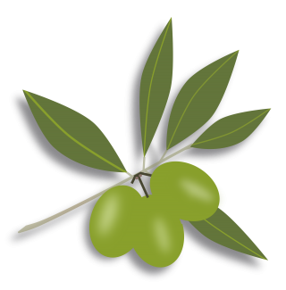 Olives Png Available In Different Size PNG images
