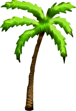 Palm Tree Png Available In Different Size PNG images