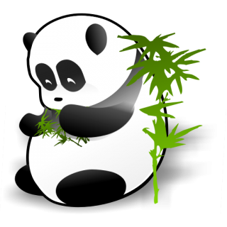 Drawing Panda Vector PNG images